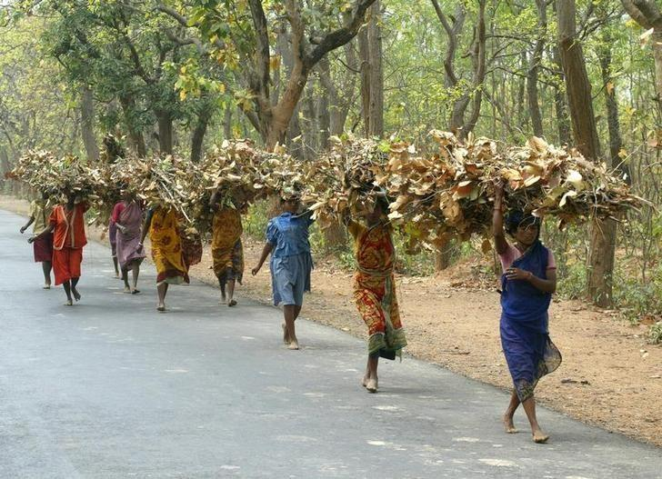 Tribal women carry bundles of twigs and leaves near Shantiniketan, 150 km (95 miles) northwest of Calcutta on March 18, 2004. REUTERS/Jayanta Shaw/Files